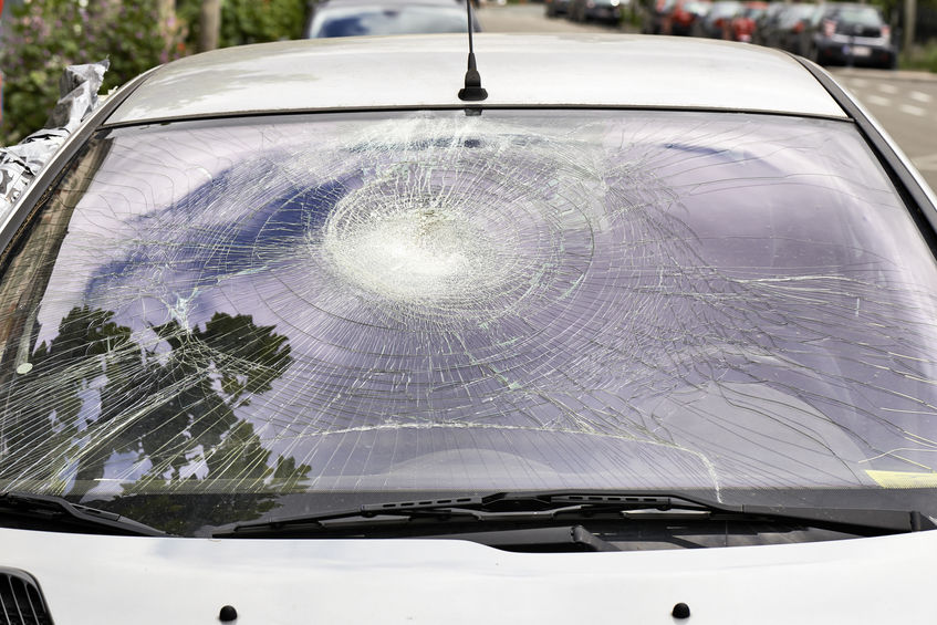 Common Falling Items That Can Damage Your Windshield