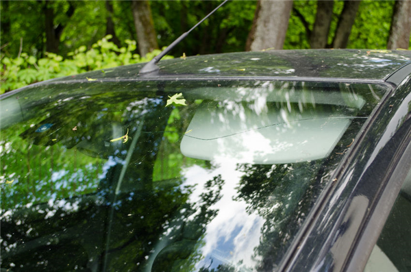 Driving With a Cracked Windshield? Your Safety is at Risk