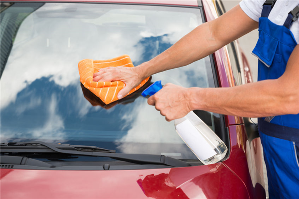 Banning the Bugs: Protecting Your Windshield from Bug Splatters